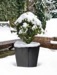 Winter- Kälteschutzmatte Fast-Fix